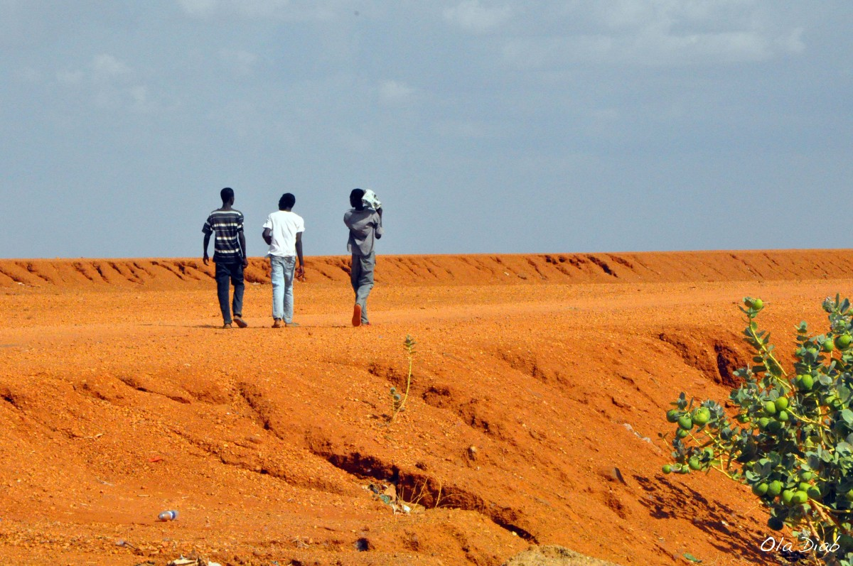 In Focus: Youth Development in Sudan